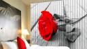 Фотографии штор, жалюзи и рольставен с фотопечатью