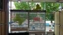 Фотографии роллетных решеток